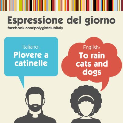 Learning Italian Language ~ Italian / English idiom: to rain cats and dogs