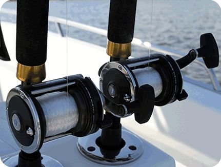1000 images about fishing the gulf of mexico on pinterest for Deep sea fishing perdido key