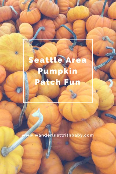 Seattle Area Pumpkin Patch Fun - Wanderlust with Baby - Tips and Tricks for Traveling with Kids