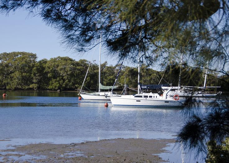 Lemon Tree Passage. The marina, where you will find cafes, a large children's playground and lot's of Pelicans! #portstephens #lemontreepassage
