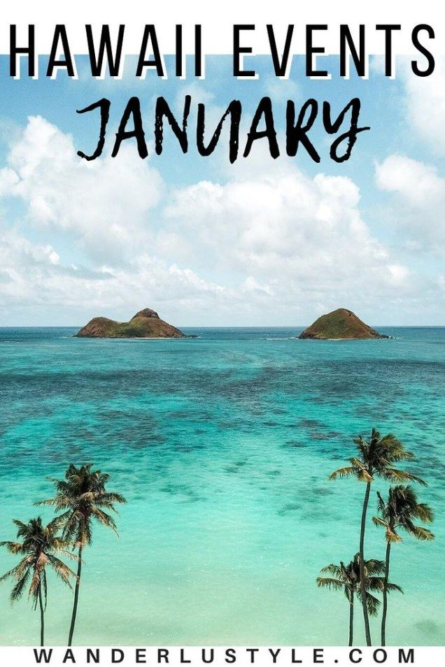 Oahu January Events 2020 In 2020 Oahu Travel Hawaii Travel Hawaii Things To Do