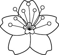 orange blossom coloring page - 13 best images about flowers on pinterest orange trees