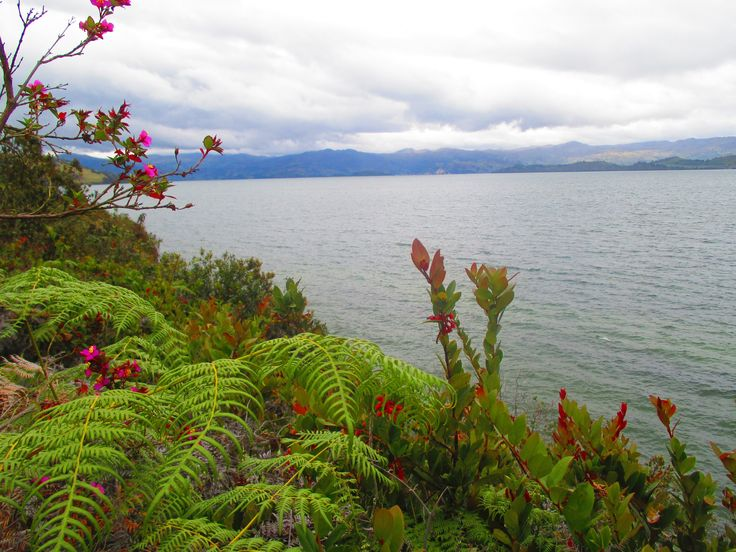 Laguna de Tota, Boyaca Colombia