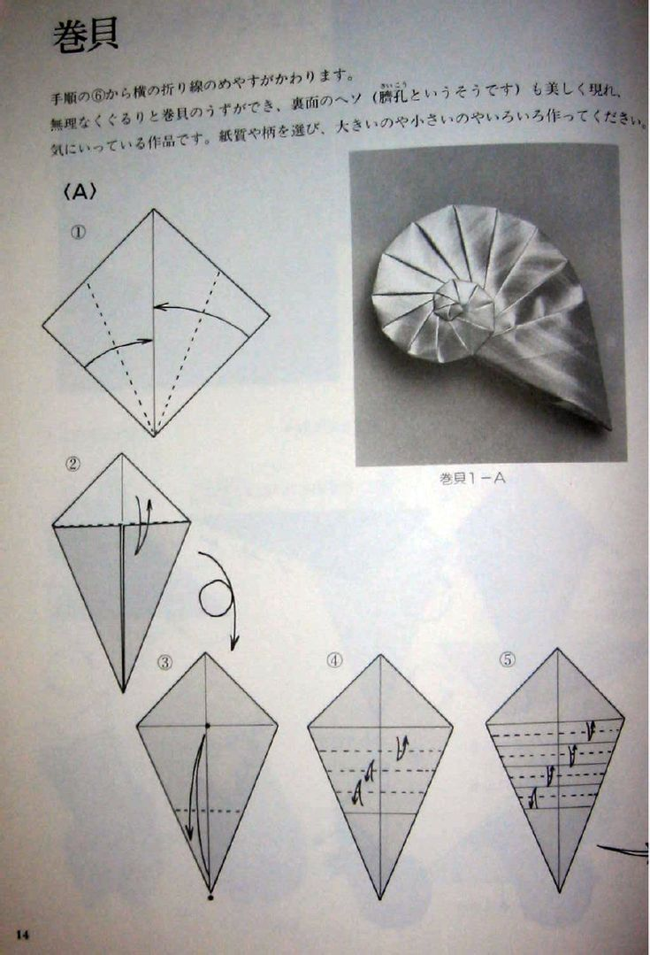 Spirals Shells Boxes Snails Tomoko Fuse | Scribd