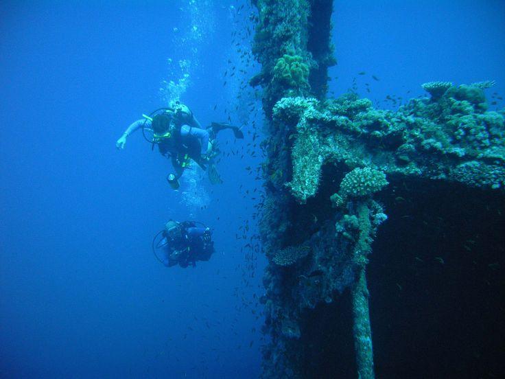 Ved Subic Bay i Filippinerne kan du dykke ved skibsvrag som ligger på havbunden som et minde om krigstiden.