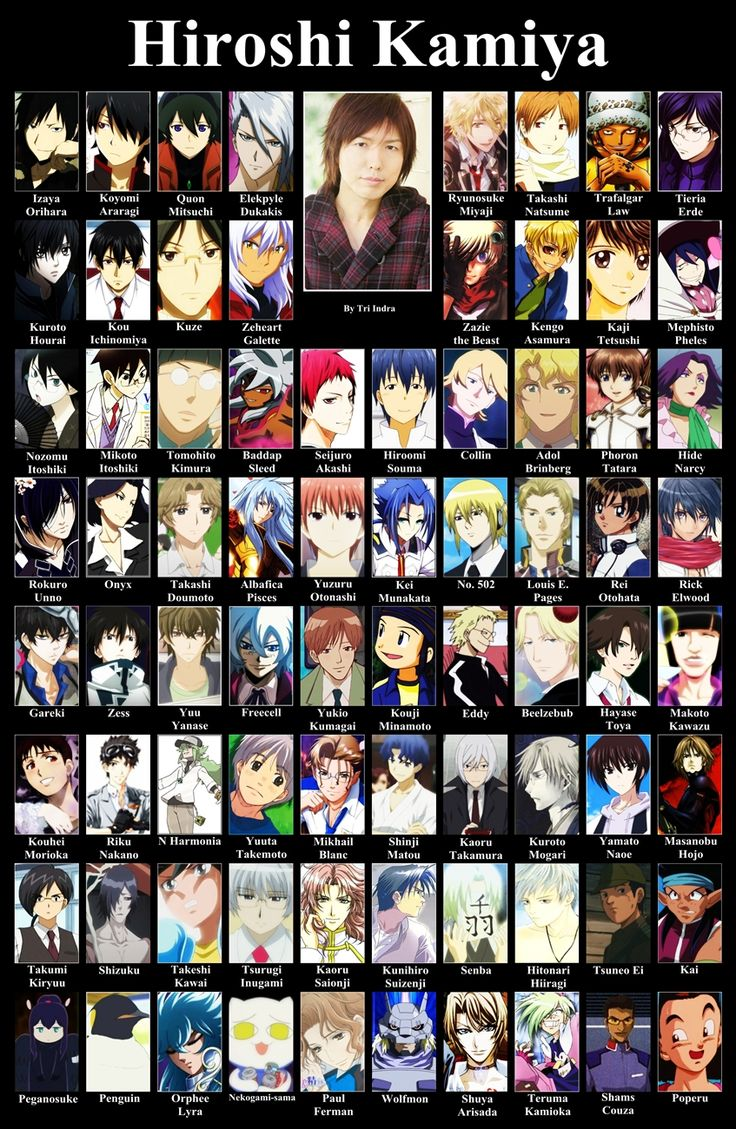 Hiroshi Kamiya ~~~ Brilliant seiyuu. Hibiki from devil survivor 2, Izaya from durarara, souma from working, akashi from kuroko, otanashi from angel beats, gareki from Karneval, Levi from AOT, yato from noragami, art from hamatora and so many more!!