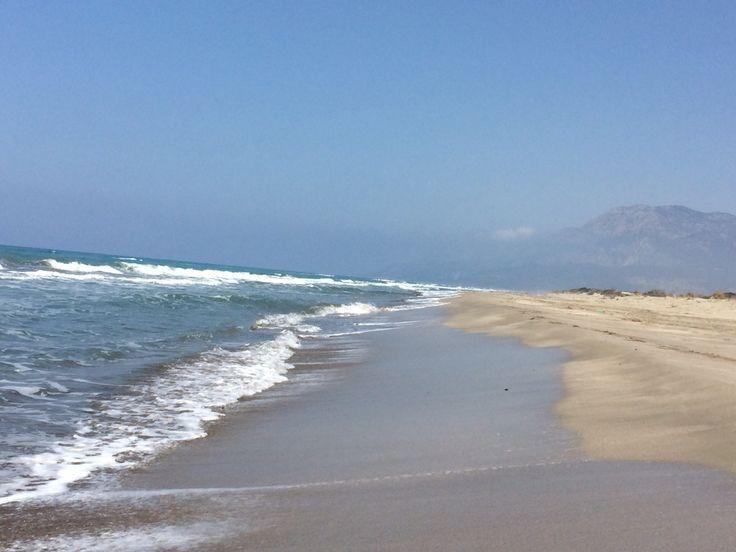 Patara Beach, Turkey: loggerhead turtle heaven!