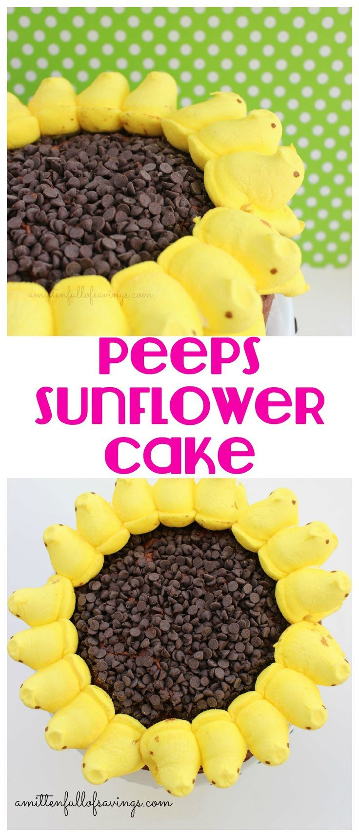 Get your Peep on with this fun, easy Easter treat! Learn how to make your own Peeps Sunflower Cake!