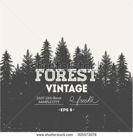 Pine forest. Journey design template. Vector illustration - stock vector