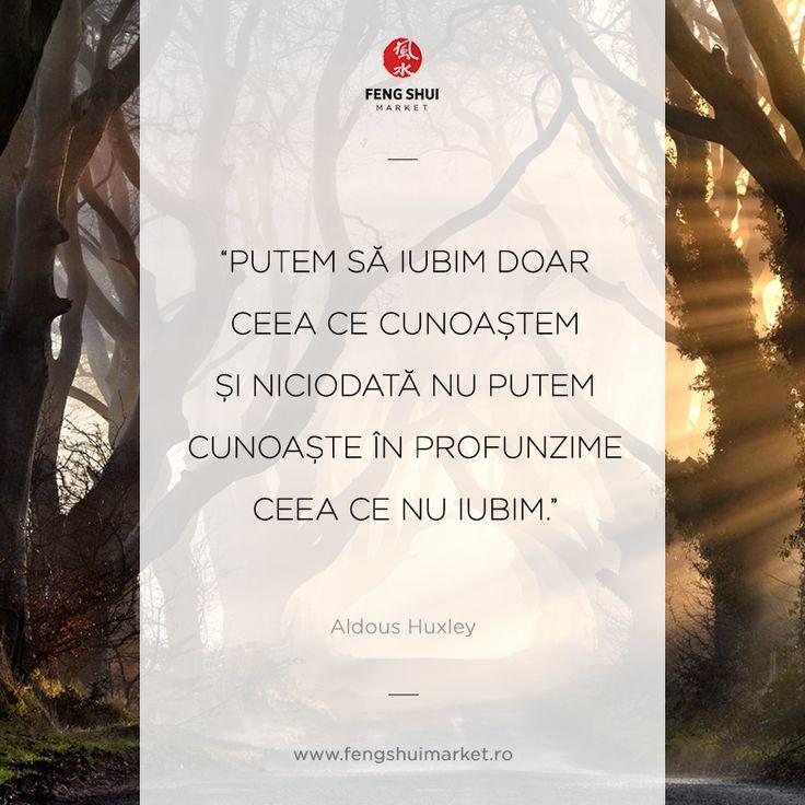 Săptămâna începe cu vorbele înțelepte ale lui Aldous Leonard Huxley. Să aveți parte de o zi frumoasă!