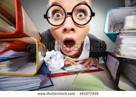 Image result for portrait of a female accountant