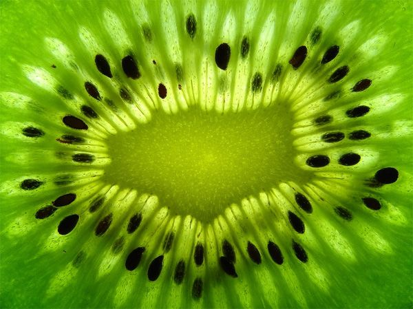 Creative and Appetizing Food Photography: Fruits...  Abstract photography ideas .