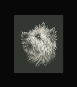 Cairn Terrier -  This is the actual size of the scratch art. This size is intended as example of a memorial for an urn. Smaller work, like this, can easily be done for a pendant or jewellery.  I can work from a photo. A web site dedicated to this is planned. In the mean time I can be contacted at sue@suewalters.com #cairnterrier