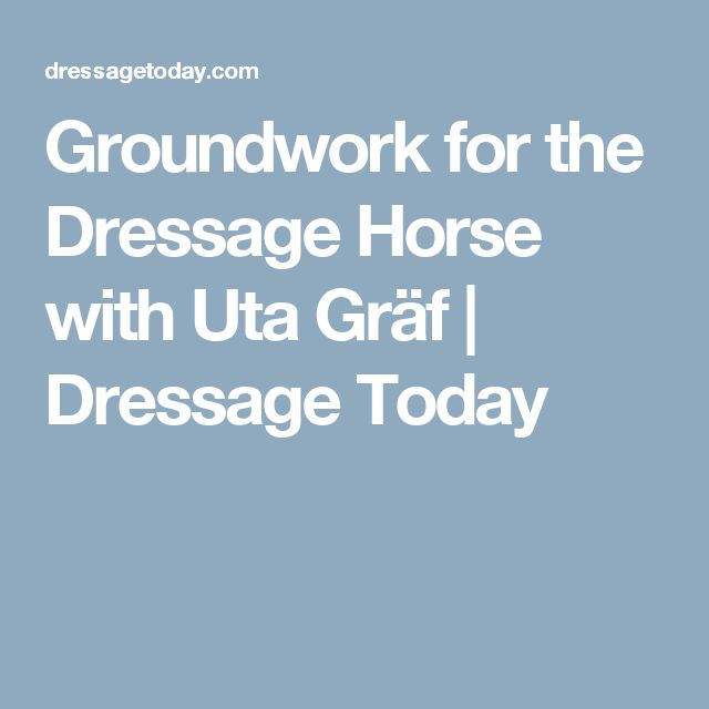 Groundwork for the Dressage Horse with Uta Gräf | Dressage Today