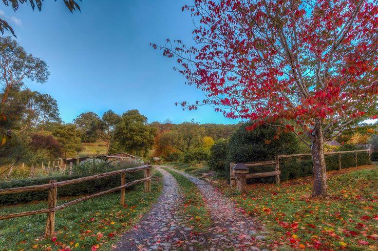 59 besten Red Apple Cottage Bilder auf Pinterest | Apfelplantage ...