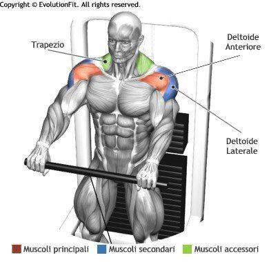 Elévation frontale à la poulie
