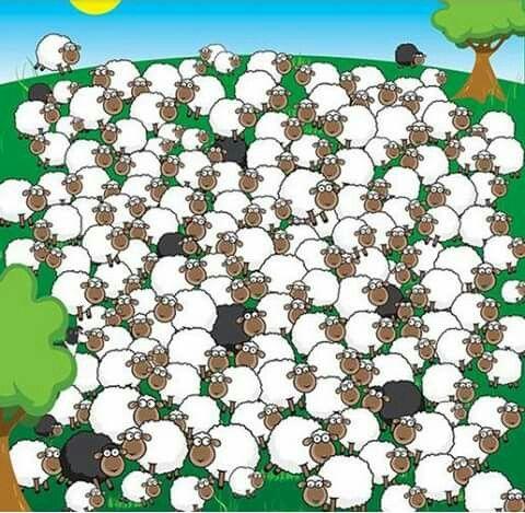 Encuentra la oveja dormida y el perro pastor