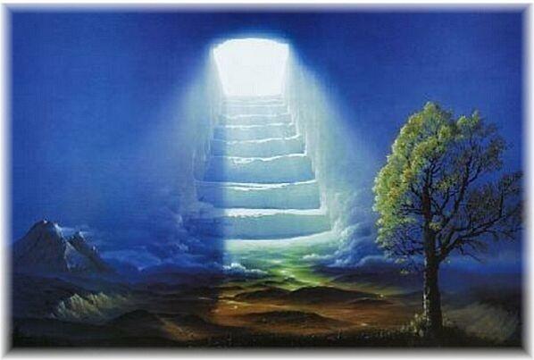 """Vision"" - Hans -Werner Sahm"