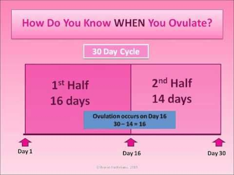 All about ovulation: how to determine if and when you ovulate.   – pregnancy calculator