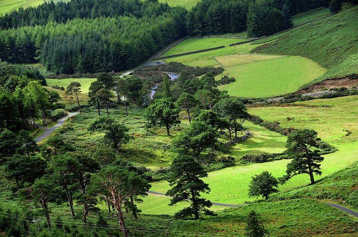 In The Heart Of Emerald Valley. Wicklow. Ireland by Jenny Rainbow