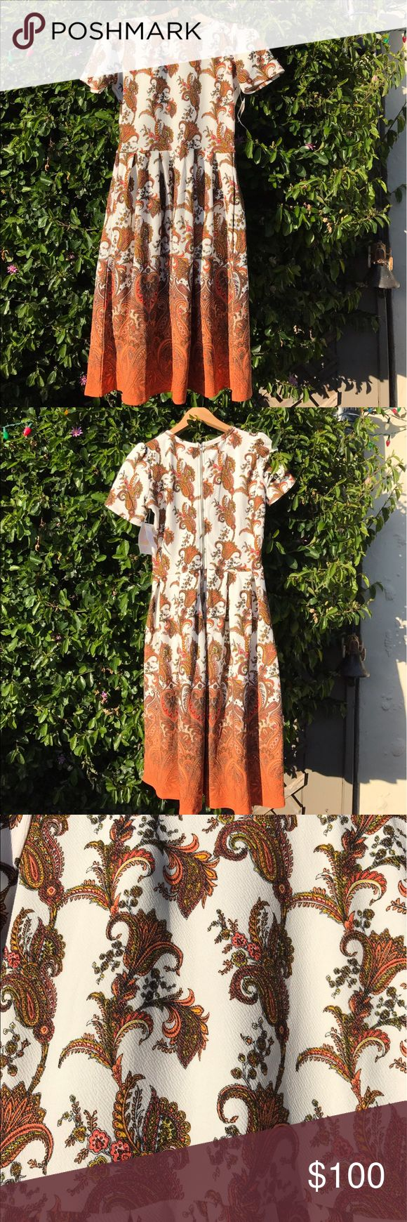 LuLaRoe Amelia Ombre Dipped Dress BNWT HTF LuLaRoe Amelia Dress. Size Medium. BNWT. Hard to Find Ombre Dipped Print! This dress can be worn throughout the seasons. Pair it with boots, Birkenstocks, heels, or converse. Amelia is versatile and stretchy! Wear with the zipper in the back or the front!! Add a belt for a different look. This dress has POCKETS!! Who doesn't love pockets?! Smoke free home. Is this your Unicorn, Arrow, Elephant, Disney Roses, Paisley, or Owl Print?  Quick shipping…