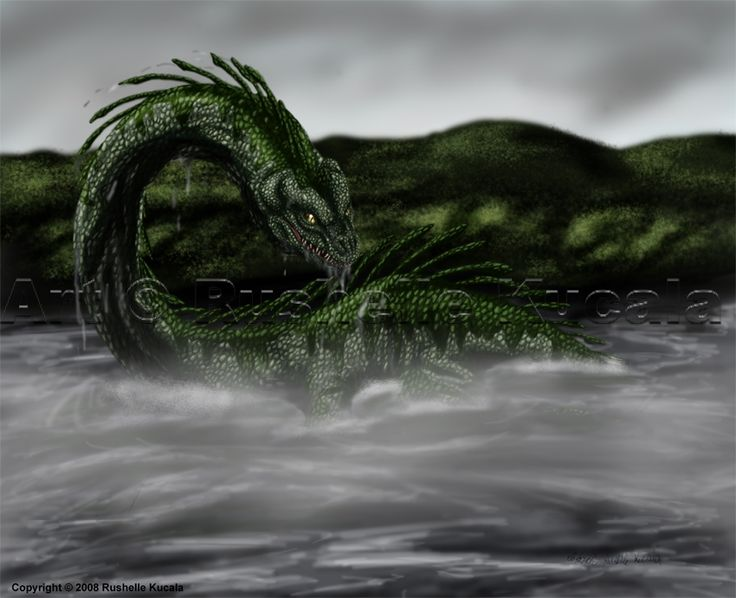 One Of The Most Popular Cryptids Out There Nessie Monster Loch Ness Now I Know In Reports And Sightings Her Dont Say She Has Spines All D