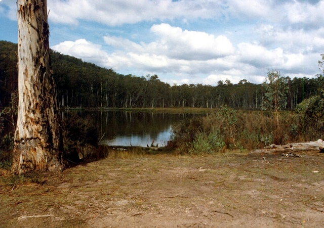Pineapple Flat Easter 1983-04 by 4x4galore, Lake Cobbler back in 83