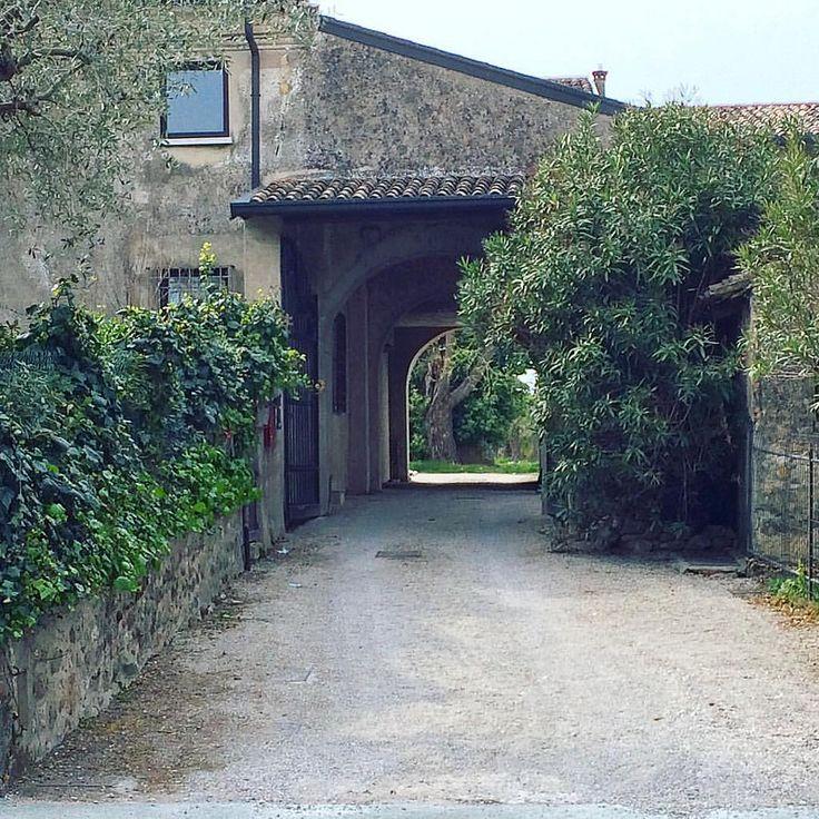 Sirmione ,Italy —–  Сирмионе, Италия #scaligercastle #castle #sirmione #brescia #italy #italian #lake #garda #gardalake #travel #traveling #travelgram #travelphoto #creativephototeam