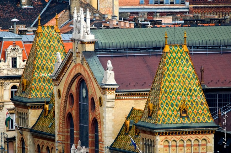 Grand Market Hall and its Zsolnay ceramic roof, Budapest, Hungary ph-eduardo balogh photography