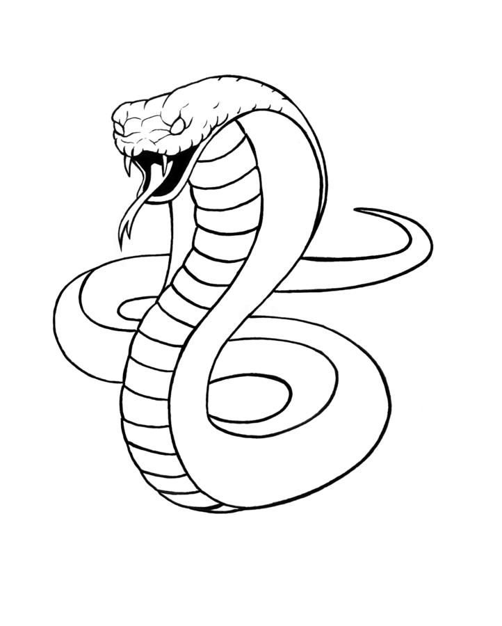 Рисунки змея карандашом