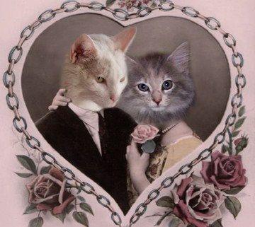 Tristan and Isolde Vintage Cat 5x7 Print от AnimalFancy на Etsy