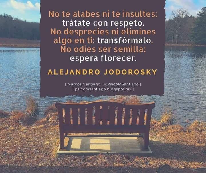 Trátate con RESPETO. Alejandro Jodorowsky
