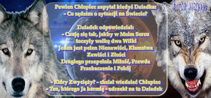 w Sercu dwa Wilki - dwa Światy  Jeden jest pełen Nienawiści, Kłamstwa, Zawiści i Złości  Drugi jest pełny Miłości, Prawdy, Przebaczenia i Pokoju  http://jasnowidzjacek.blogspot.com