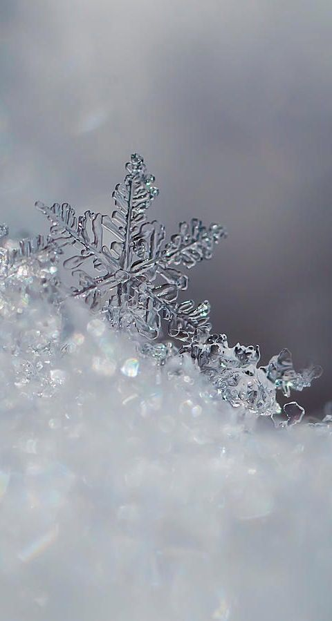 Icy Snowflakes Winter Iphone Android Cellphone Lock Screen Wallpaper Background