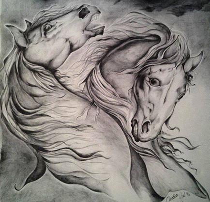 Cavalli su tela 50 x50 bic nera