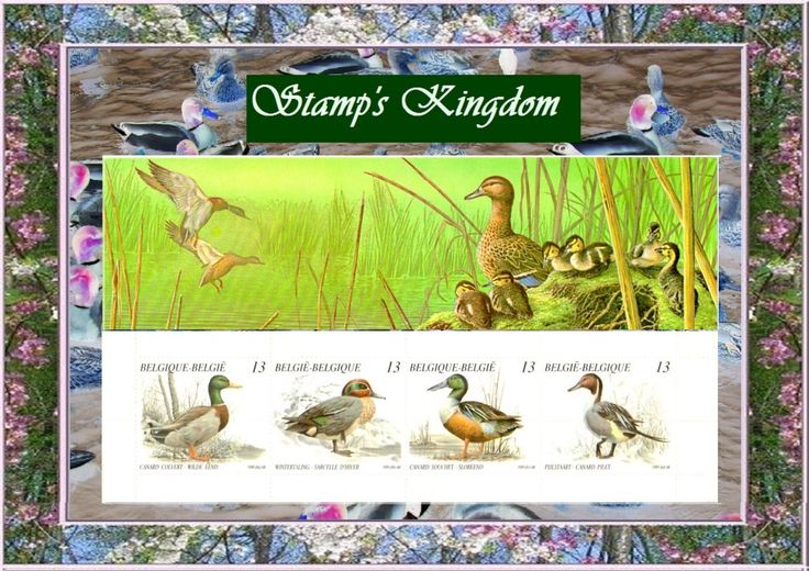 Wildlife, wild ducks, stamp book Belgium 1989, vintage Market value used in the price of this article: 2,50 € #JFBstamp #ArtandCollectibles #Photography #Color #Vintagestamp #Wildducks #Belgium 1989 #Photostamps #MadeinFrance #Singlemodel #decoration #collection #Digitalediting #multicolored #philately #Unusedstamps #postagestamps