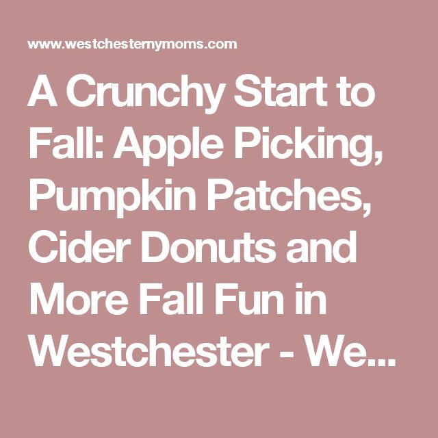 A Crunchy Start to Fall: Apple Picking, Pumpkin Patches, Cider Donuts and More Fall Fun in Westchester - Westchester NY Moms