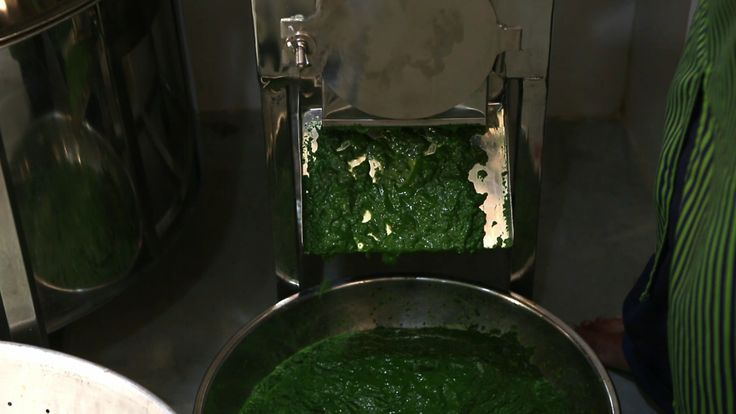 Palak grinding machine to prepare paneer palak