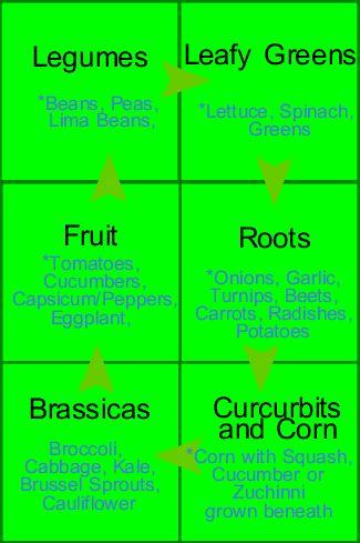 Six cycle crop rotation.