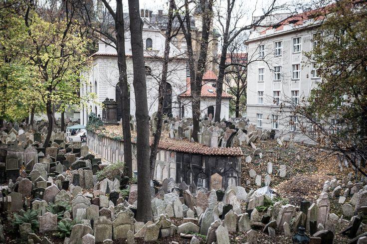 JEWISH CEMETERY, PRAGUE. PHOTO: Honza Zima