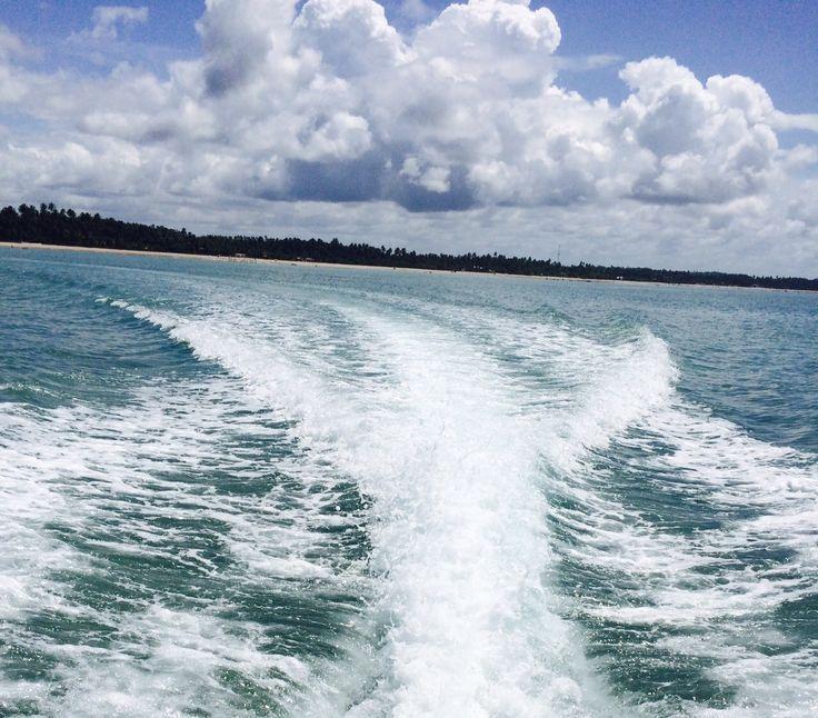 Ilhas de Maragogi. Segue em frente!!