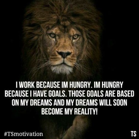 Motivational Quotes With Lion Images: Best 25+ Leo Ideas On Pinterest