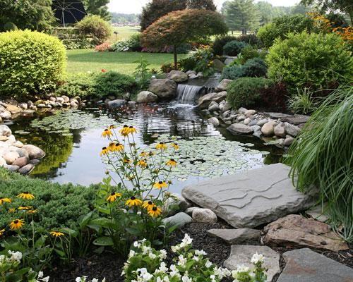 An eco friendly paradise