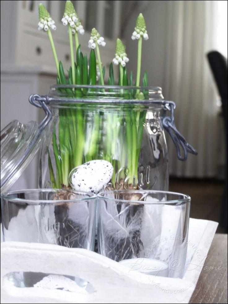 die besten 25 einmachgl ser dekorieren ideen auf pinterest glas kerze einmachglas gr en und. Black Bedroom Furniture Sets. Home Design Ideas