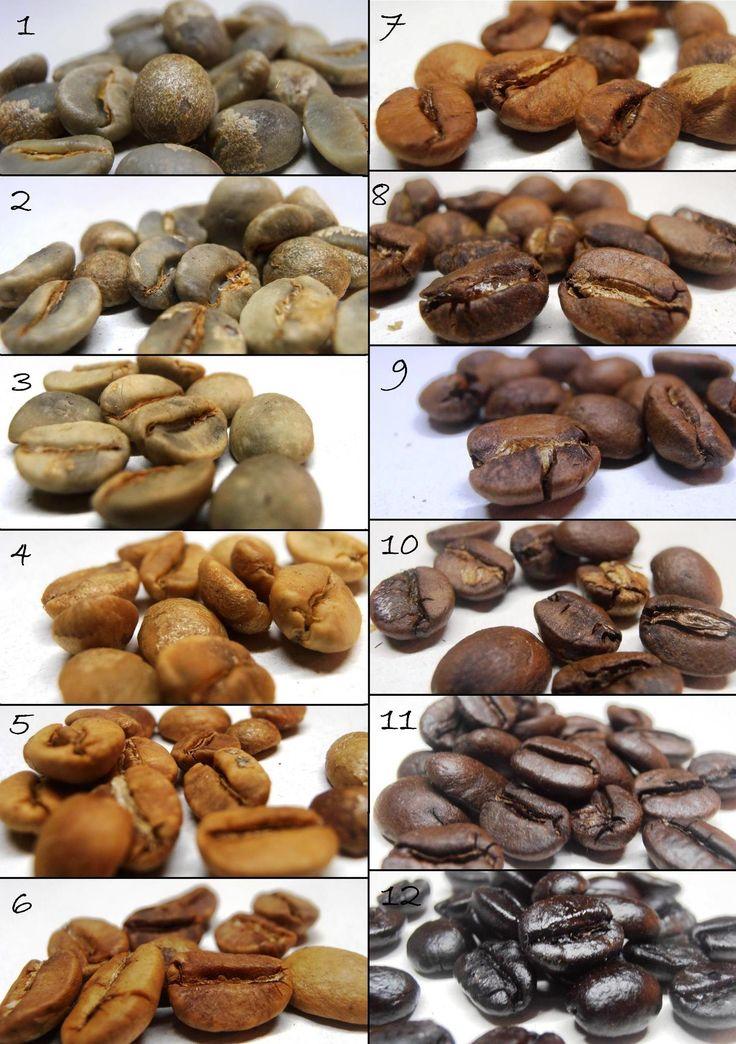 #Roasting Process (1 - Green Cafe) (2-3 'roasting) (3-4' roasting) (4-5 'roasting) (5-6' roasting) (6-7 'roasting) (7-8 'roasti