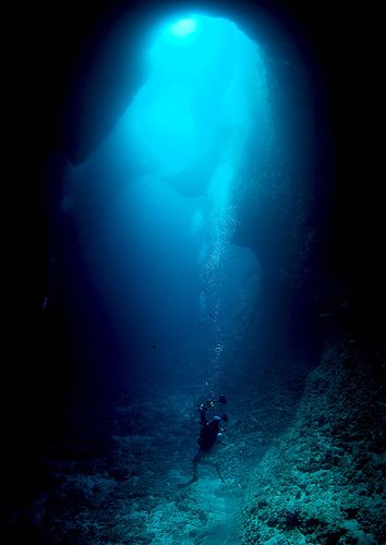 """""""I am not at home, nor near any city or people; I am far out in the Pacific on a desert island, sitting on the bottom of the the ocean; I am deep down under the water in a place where no human being has ever been before"""" William Beebe -Victoria Clark"""