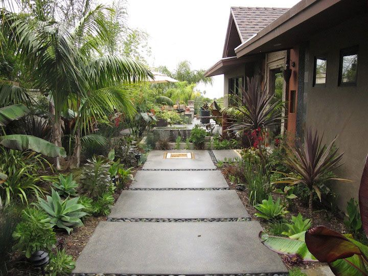 116 best images about tropical plants on pinterest sun for Balinese garden designs ideas