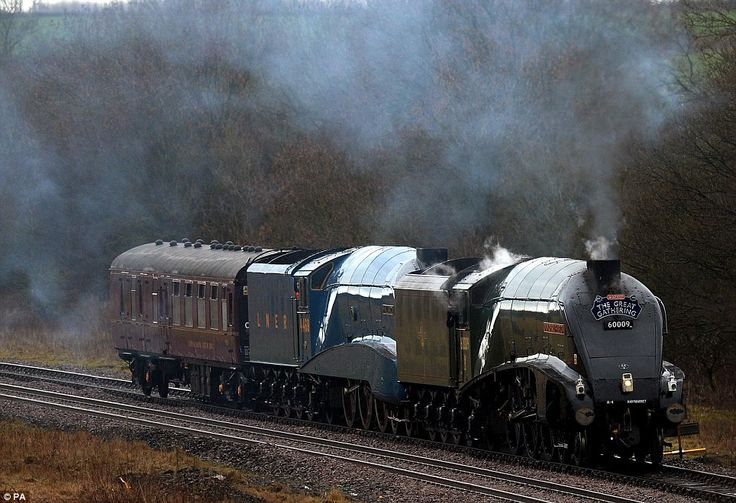Our Mallard 75 February half term will showcase all six streamlined Gresley giants, some in steam at Locomotion at Shildon. Description from dailymail.co.uk. I searched for this on bing.com/images