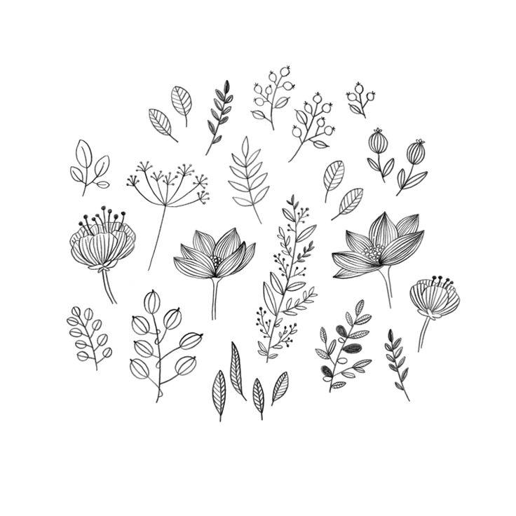 minnamay_plants+copy1.png