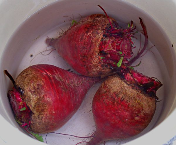 How to cook beets. Sooooo much better than the canned stuff. This is the way to do it. Then I pour high quality olive oil and balsamic vinegar and salt and pepper. Delish.